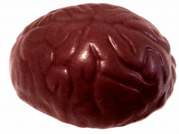 Novelty Chocolate Brain